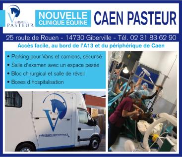 Clinique vétérinaire Caen Pasteur